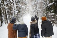 Promenade dans la forêt d'hiver Image stock