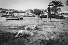 Promenade dans le mindelo photographie stock