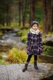 Promenade dans les bois Image stock