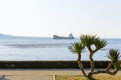 Promenade de bord de la mer, mouettes et un grand bateau en mer photos stock