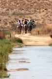 Promenade de cheval Photo libre de droits
