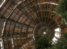 Promenade de cime d'arbre dans la forêt bavaroise - Allemagne image stock