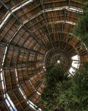 Promenade de cime d'arbre dans la forêt bavaroise - Allemagne photographie stock