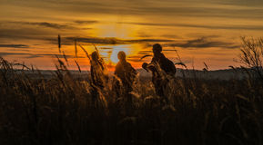 promenade de coucher du soleil Photo stock