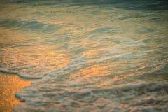 Promenade de coucher du soleil de bord de la mer Images libres de droits