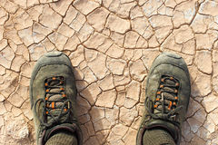 Promenade de désert Photographie stock