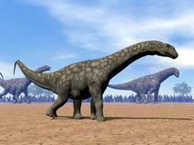 Promenade de dinosaures d'Argentinosaurus - 3D rendent Image stock