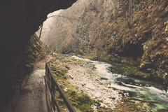 Promenade de falaise avec le rivage couvert en mousse et rivière de Radovna Photo stock