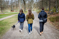 Promenade de famille de ressort Image stock