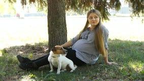 Promenade de femme avec le chien en parc Fille enceinte Femme enceinte en stationnement banque de vidéos