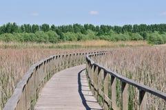 Promenade de l'eau Photo stock