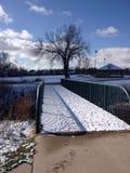 Promenade de l'hiver Photo stock