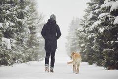 Promenade de l'hiver image libre de droits
