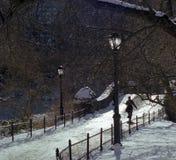 Promenade de l'hiver de Central Park Photographie stock