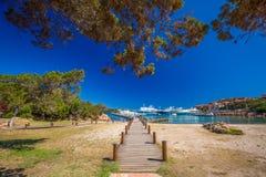 'promenade' de la costa costa con los árboles de pino y agua clara del tourquise en Oporto Cervo, Costa Smeralda, Cerdeña, Italia fotos de archivo libres de regalías