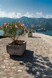 'promenade' de la playa Foto de archivo libre de regalías
