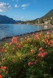 'promenade' de la playa de Malcesine con las rosas florecientes Foto de archivo