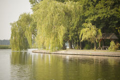 Promenade de lac Photo libre de droits