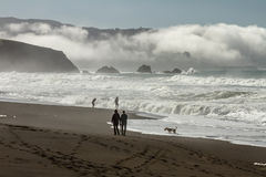 Promenade de matin avec le roulement de brouillard dans la baie Photographie stock