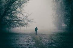 Promenade de matin dans le brouillard et le froid photo libre de droits