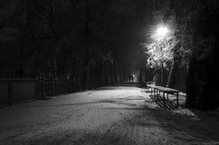 Promenade de Milou en parc Images stock