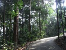 Promenade de nature image stock