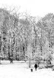 Promenade de neige avec le crabot Photographie stock libre de droits