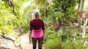 Promenade de palmier de Coco de Mer banque de vidéos