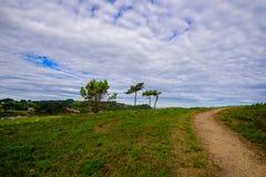 Promenade de paradis par la mer Photo stock