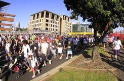 Promenade de passage d'Auckland autour des compartiments Photographie stock