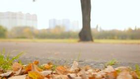 Promenade de personnes en parc Plan rapproché des jambes Mouvement lent banque de vidéos