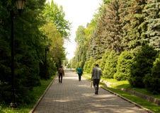 Promenade de personnes le long de l'allée Photographie stock libre de droits