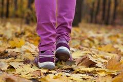 Promenade de pied sur les feuilles jaunes Image libre de droits