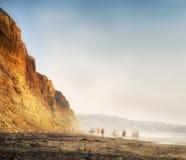 Promenade de plage de coucher du soleil, San Diego, la Californie Images libres de droits