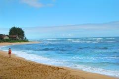 Promenade de plage pendant le début de la matinée sur Kauai image libre de droits