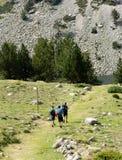 Promenade de randonneurs le long de chemin dans la forêt image stock