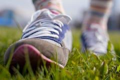 Promenade de ressort en parc Photo stock