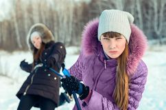 Promenade de ski. Images libres de droits