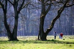 Promenade de source. Images libres de droits