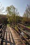 Promenade de source au lac photographie stock