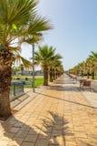 Promenade de téléphone Aviv Israel National Trail Image stock