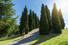 Promenade de touristes en parc Photos libres de droits