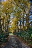 Promenade de Tutira de lac en automne La baie de Hawke Quelque part en Nouvelle Zélande photos stock