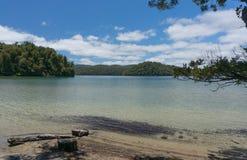 Promenade de Waikareiti de lac Te Urewera National Park photographie stock