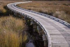 Promenade in den Sumpfgebieten lizenzfreies stockbild
