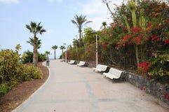 Promenade in der Costa Adeje, Tenerife Lizenzfreie Stockfotografie