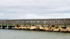Promenade die met Zeemeeuw zich op traliewerk bevinden die water overzien Royalty-vrije Stock Foto