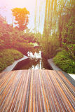 Promenade donnant sur un bel étang pendant le début de la matinée photo libre de droits