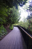 Promenade durch Wald Lizenzfreie Stockfotografie
