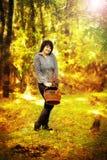 Promenade en bois Photos libres de droits